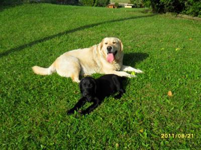 Tucker and Heidi