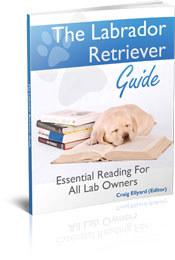 labrador retriever ebook
